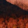 秋の奥日光  三題   陽の当たる場所