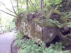 2018/07/16_奥入瀬渓流沿いの巨石