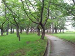 2018/07/16_合浦公園