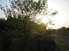 2017/04/30_花の丘農林公苑の夕暮れ