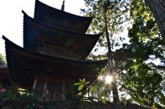 西明寺三重塔-2-