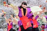 佛教大学 紫踊屋さん2
