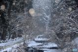 貴船川・雪化粧