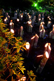 竹灯り・幽玄の川
