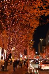 クリスマスシーズンの輝き2017⑩