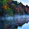 朝霧煙る紅葉の池