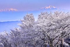 樹氷日和 乗鞍までも。