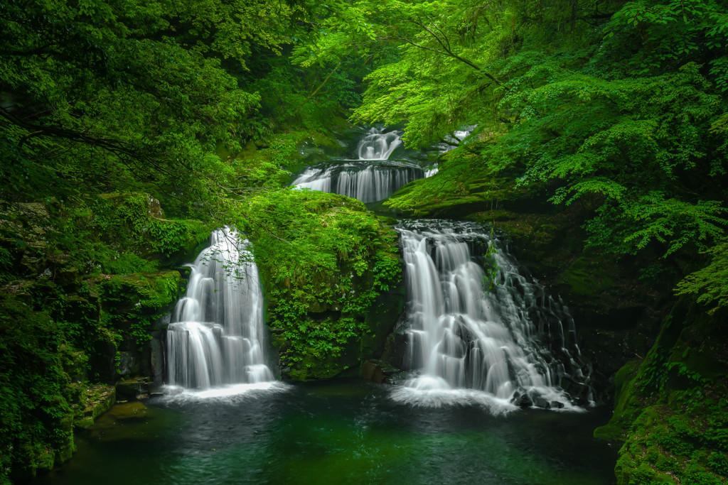 新緑の中の名瀑