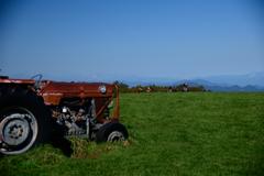 秋晴れの草原