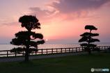 霞ヶ浦の夕日