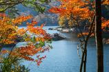 三河湖の秋