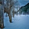 湖上の雪原