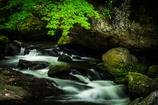 美しき王滝渓谷