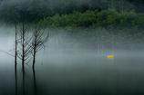 雨の自然湖3