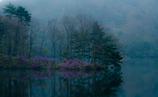 湖畔の楽園