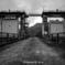 豊根ダム水門