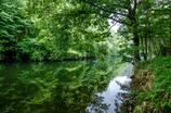 美しき湖畔の調べ