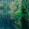 水面に写る静かなる時間