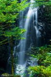 お軽の滝 (再挑戦)