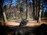 森のバイク