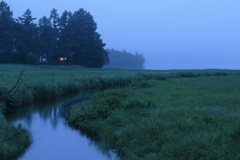 朝の大江湿原