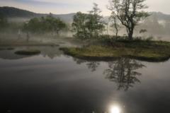 月明かりの尾瀬 2
