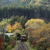 粧う山里の駅