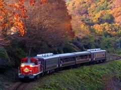 秋は「渓流号」に乗って、、、