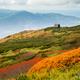 羊蹄山の紅葉