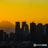 夕景 富士と高層ビル
