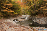 中津川渓谷の紅葉Ⅰ