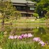 肥後細川庭園1 文京区