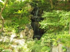 都心の滝 大滝 古河庭園