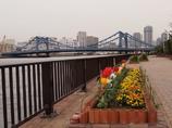深川界隈の橋 清洲橋3