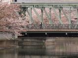 深川界隈の橋 東富橋1