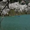 音水湖2 兵庫 波賀