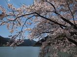 音水湖1 兵庫 波賀
