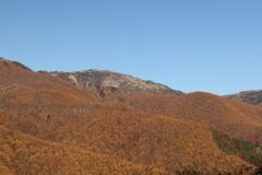 - 金色の丘 -