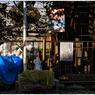 NIKON NIKON Dfで撮影した(「カワセミを見た日」 小江戸川越散歩94)の写真(画像)
