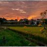 NIKON NIKON Dfで撮影した(「趣味の畑から02」小江戸川越散歩87)の写真(画像)