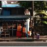 NIKON NIKON Dfで撮影した(「サツマイモの事」小江戸川越散歩127)の写真(画像)