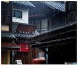 「雨濯(うたく)」小江戸川越散135