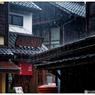 NIKON NIKON D5で撮影した(「雨濯(うたく)」小江戸川越散135)の写真(画像)