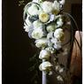FUJIFILM FinePix S5Proで撮影した(結婚式の写真 41)の写真(画像)