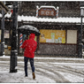 NIKON NIKON D5で撮影した(「みんな雪の中05」小江戸川越散歩143)の写真(画像)