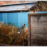 NIKON NIKON Dfで撮影した(「都市計画」 小江戸川越散歩128)の写真(画像)