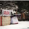 NIKON NIKON D5で撮影した(「淡雪」小江戸川越散歩150)の写真(画像)