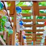 NIKON NIKON Dfで撮影した(「風鈴がいっぱい」小江戸川越散歩79)の写真(画像)
