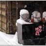 NIKON NIKON D5で撮影した(「みんな雪の中08」小江戸川越散歩146)の写真(画像)