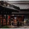 NIKON NIKON D5で撮影した(「素敵な雨の日」 小江戸川越散歩137)の写真(画像)